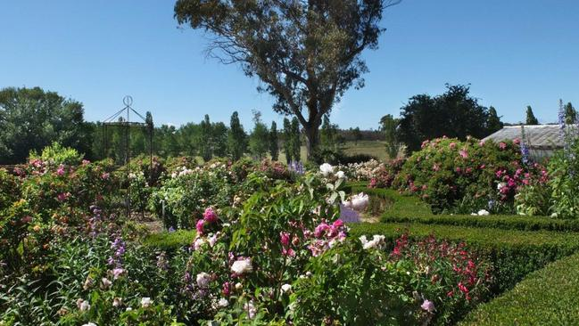 The local TAFE college runs horticulture courses in the grounds. Picture: © Holly Kerr Forsyth