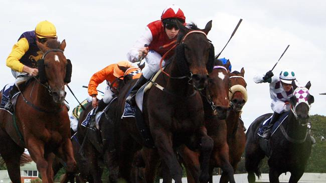 Christian Nicolussi is banking on Yulalona's Grafton Cup run to prime him for tomorrow's race.