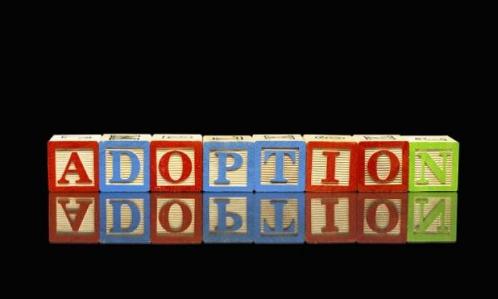 All about adoption