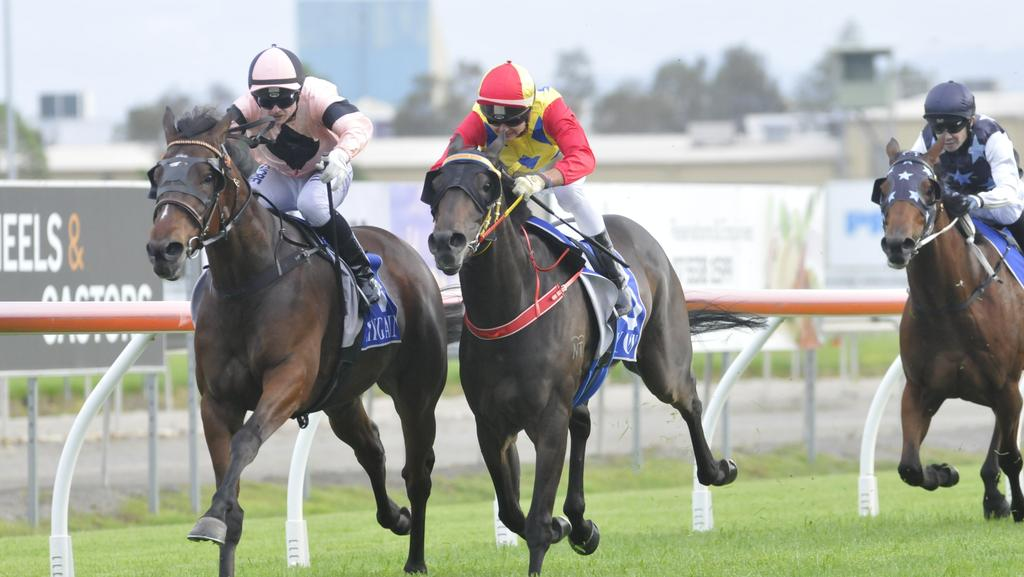 Jockey Anthony Allen rode Court's Star (far left) to victory in the Ultiqa Class 4 Handicap (1800m) at the Gold Coast on Saturday, November 26. Picture credit: Jessica Hawkins, Trackside Photography.
