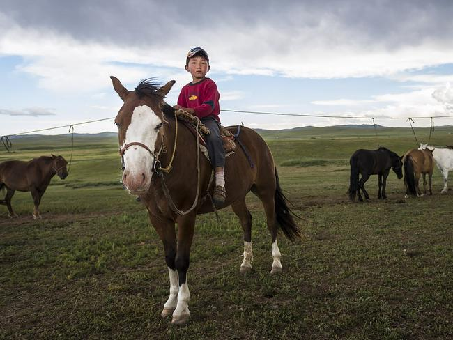 The race has become a large source of the herders annual income. Picture: Richard Dunwoody