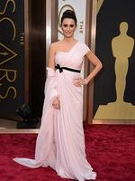 Penelope Cruz on the red carpet at the Oscars 2014. Picture: AP