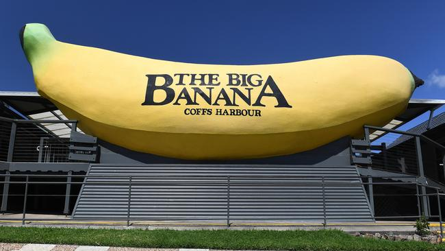 The Big Banana in Coffs Harbour could be killed by a new bypass. Picture: AAP Image/Dave Hunt.