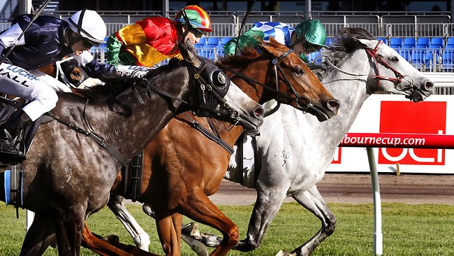 Fawkner (left) makes a statement with an impressive performance in Turnbull Stakes. Picture: Wayne Ludbey