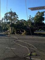 Fallen power lines closed Greenhill Rd at Toorak Gardens