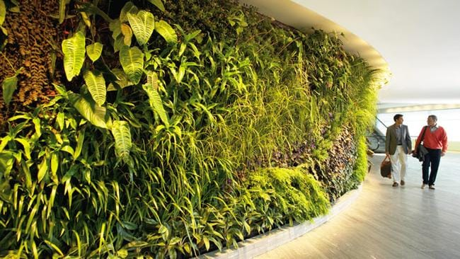 The beautiful vertical garden upon entry provides a lush, green spectacle.