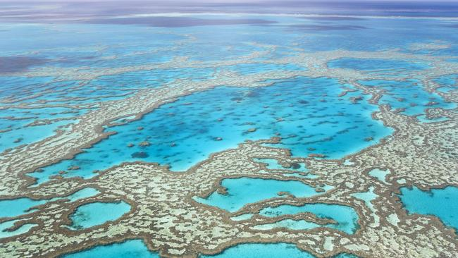 The underwater heatwave may have changed the reef forever. Picture: Getty