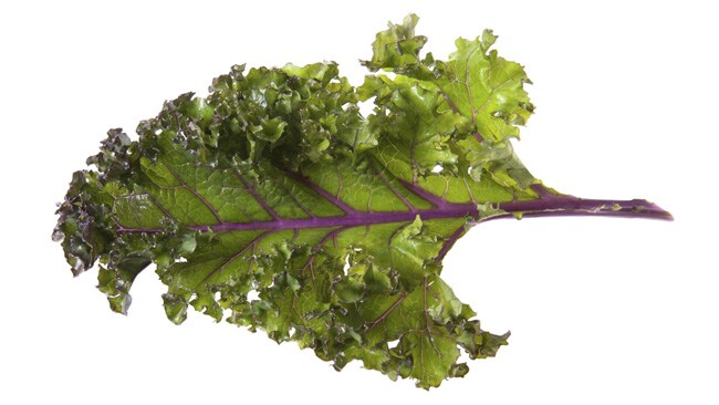 Kale - just add salt and bake! Picture: Thinkstock