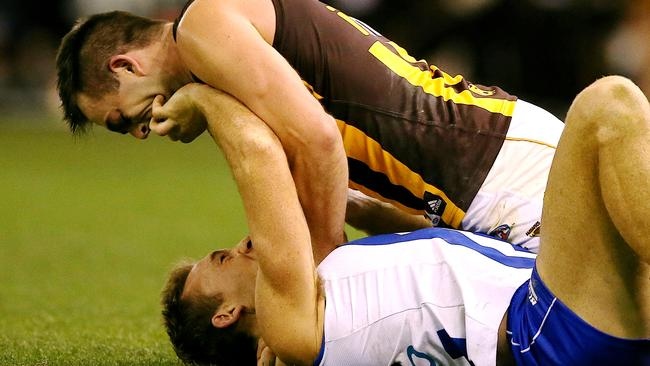 Brian Lake and Drew Petrie got physical in the third term. Picture: Wayne Ludbey.