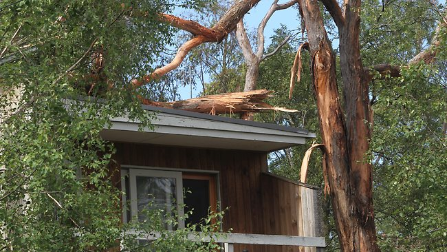 A tree snaps on a house at Mount Clear near Ballarat. Picture: Rob Leeson