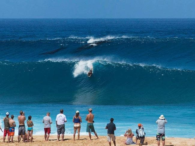 Surfing with whales at Pipeline beach Pic: from Hawaii State Bodysurfing Association Facebook.