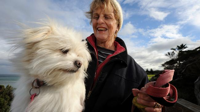 Margaret McCoppin and her Maltese Jack Russell cross, Alfie, cop an icy blast. Picture: Cormac Hanrahan.