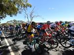 The peloton during stage one of the Tour Down Under from Port Adelaide to Lyndoch. Picture: David Mariuz/AAP Image