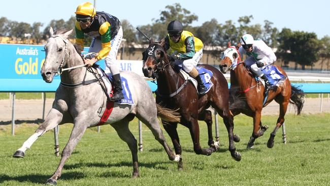 Qfighter gets in with just 52.5kg on his back at Eagle Farm on Saturday.