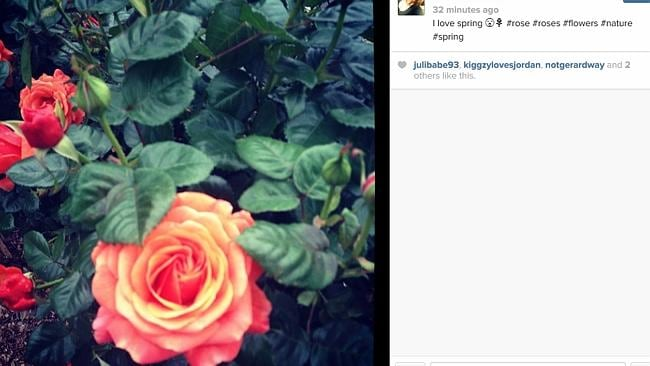 #SPRING: There was a lot of competition within the hashtag, but roses reign supreme.