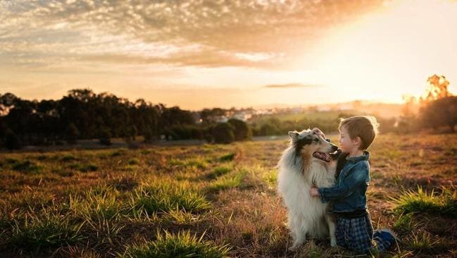 Nate, 3, and Jasper, the collie, 9. Picture: Sarah Jean Warry