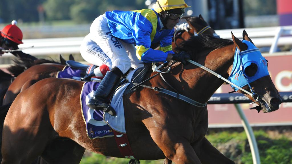 Ascot Races 18.4.2015 race 7 No. 8 First Among Equals ridden by Peter Knuckey wins.