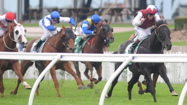 Sessions is primed to finish over the top of his Concorde Stakes rivals at Royal Randwick.