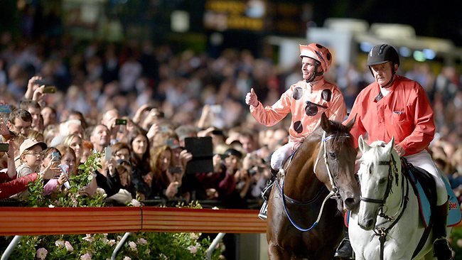THUMBS UP: Jockey Luke Nolen salutes the Moonee Valley after Black Caviar's win in the William Reid Stakes on Friday. Picture: Wayne Ludbey
