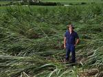 Gordonvale cane farmer Jeff Day is counting the cost of Cyclone Ita after significant damage to his crop.