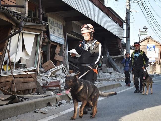 Rescuers and their dogs patrol past collapsed houses in Mashiki, Kumamoto prefecture.
