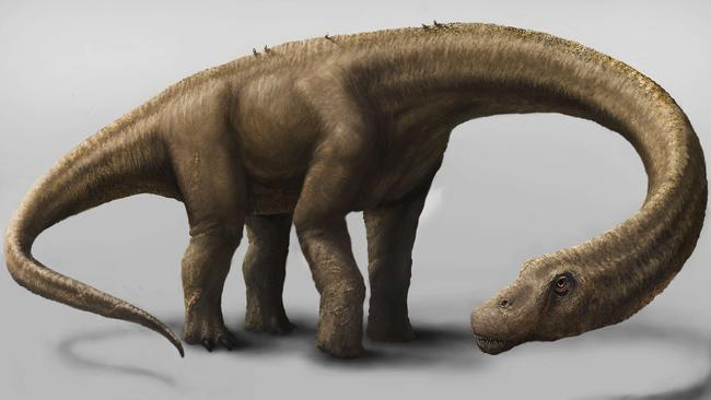 An artist's impression of Dreadnoughtus schrani. Picture: AFP/Mark A Klinger/Carnegie Museum of Natural History