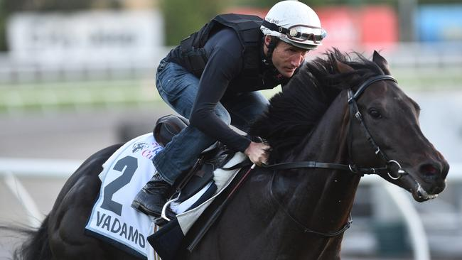 Damien Oliver gave Vadamos a look around Moonee Valley on Monday.