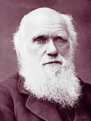 the conflict between the evolutionary theories of charles darwin and jean baptiste lamarck Theories of evolution charles darwin is famous for his theory lamarck's theory jean-baptiste lamarck was a french scientist who developed an alternative.