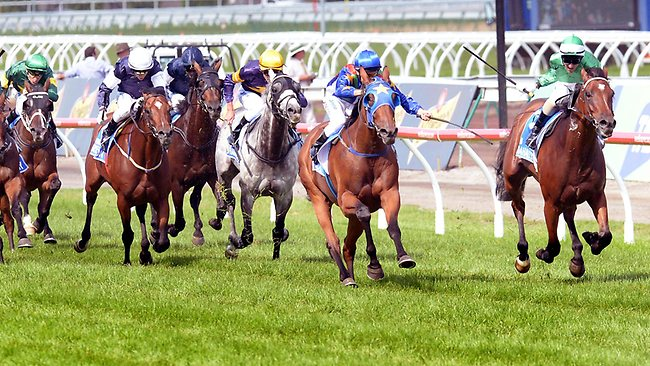 The two youngsters, Super Cool (outside) and Fiveandahalfstar, break away from the field. Picture: Wayne Ludbey