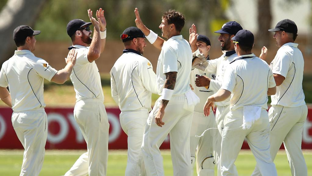 teammates get around James Pattinson after he claimed the wicket of Callum Ferguson on Thursday. Picture: Getty Images