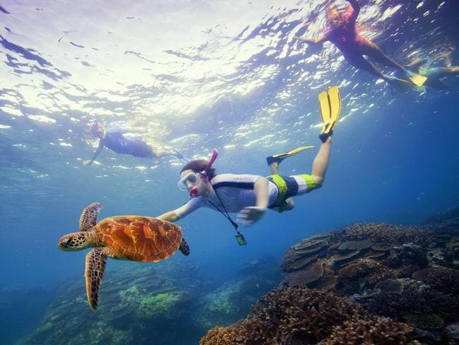Tourists flock to the Great Barrier Reef. Picture: Tourism Australia