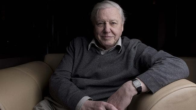 Sir David Attenborough's career as the respected face and voice of natural history programmes has endured for more than 50 years. Picture: Rann Chandric