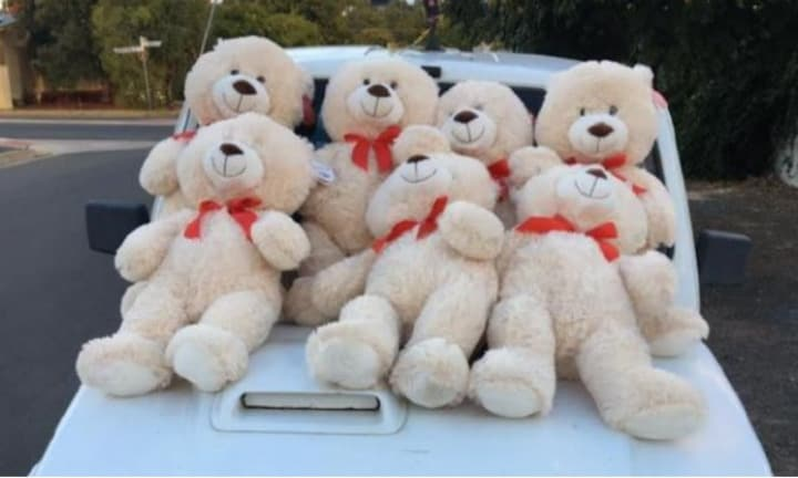 Town horrified at shock find of mutilated and decapitated teddy bears