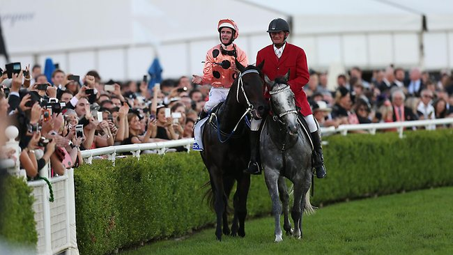 Victory parade: Black Caviar and Luke Nolen return to scale. Picture: Rohan Kelly