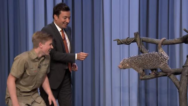 Irwin couldn't contain his giggles when Fallon jumped away from Peanut. Picture: YouTube.