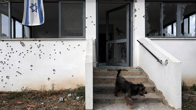 A dog walks down from a house covered with shrapnel holes, damaged by a rocket fired by Palestinian militants from the Gaza Strip after it hit in a community near Ashdod, southern Israel. Picture: Tsafrir Abayov