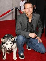 "Paul Walker with his fury co-star at the premiere of ""Eight Below"" in Los Angeles, 2006. Picture: Getty"