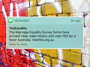 yes campaign vote text msg