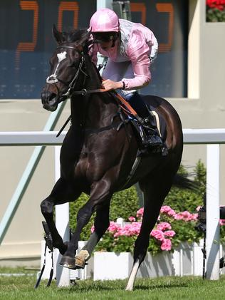 Prince Of Wales's Stakes winner The Fugue ridden by William Buick.
