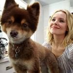 "Kristen Bell ... ""Don't worry about me and Milo the trailer dog. We're doin JUST fine. #friendship"" Picture: @kristenanniebell/Instagram"