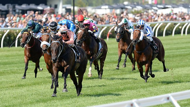 Luke Nolen urges another effort from Black Caviar as she leaves her rivals behind on the way to smashing the course record for the 1000m dash. Picture: George Salpigtidis