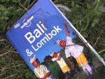 This image taken from a video shows a guidebook for Bali found in the wreckage. Picture: AP