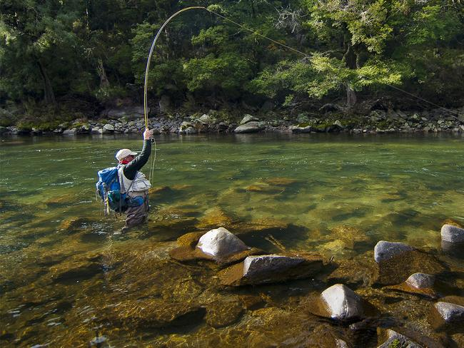 Fly fishing at Poronui Lodge.