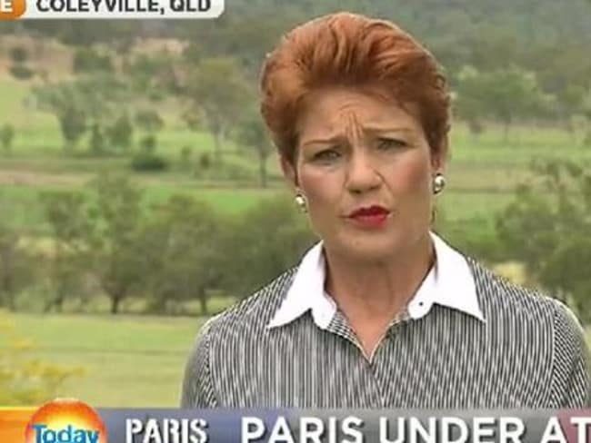 Pauline Hanson ... The controversial politician was blasted for her extreme anti-immigration comments. Picture: Today Show