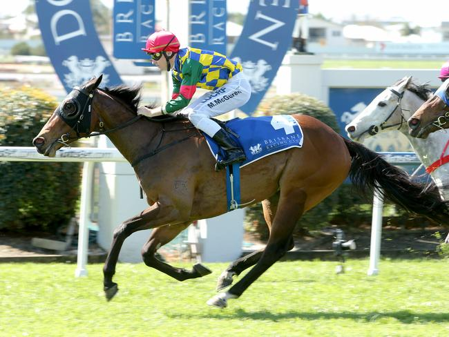 Matthew McGuren wins aboard Avaladyluck at Doomben last month. Picture: Mark Cranitch