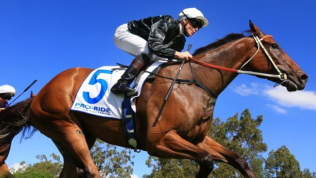 Leebaz, with James McDonald aboard, wins at Warwick Farm recently. Picture: Mark Evans