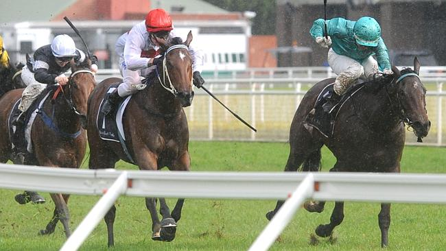 Northern Glory ticks a lot of boxes in the Darby Munro Stakes (1200m). Picture: Simon Bullard