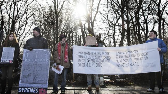 Angry ... Some 20 people demonstrate outside the zoo against the killing. Pic: Kasper Palsnov.