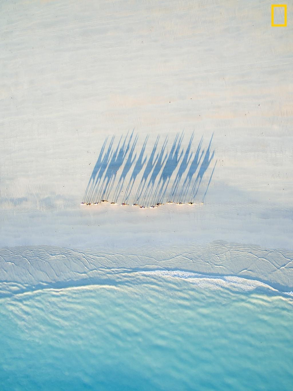 Photo by Todd Kennedy / National Geographic Nature Photographer of the Year contest Cable Beach Camel Caravan A bird's eye view of a caravan of camels walking along Cable beach at sunset.