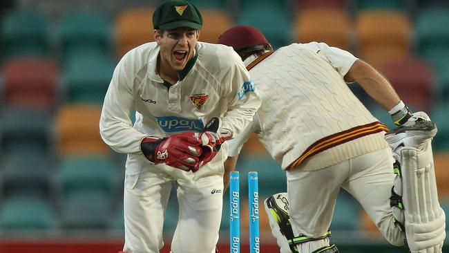 Tim Paine will snub an interstate move and stick with Tasmania.